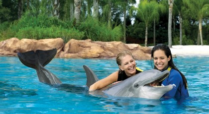 Discovery_Cove_orlando_theme_park_american_vacation_living-420x230 - disney