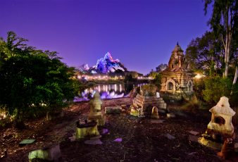 Animal_Kingdom_Orlando-338x230 - disney