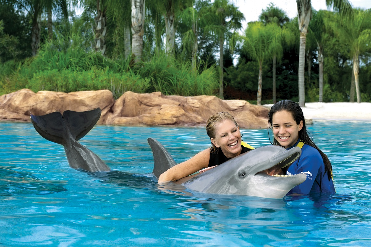 Discovery_Cove_orlando_theme_park_american_vacation_living - disney