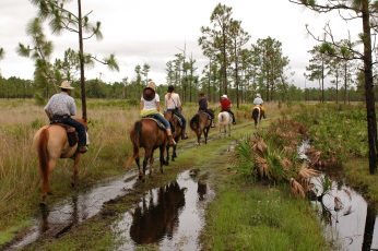 Horse_Back_Riding_orlando_attractions_american_vacation_living-346x230 - disney